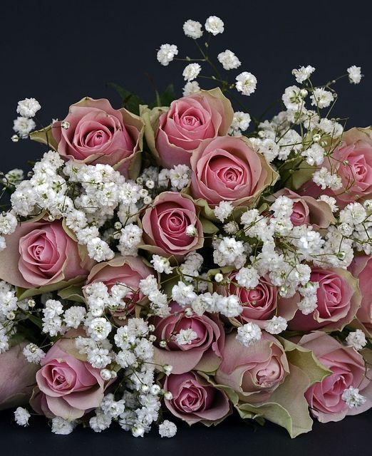 flowers online in antigua